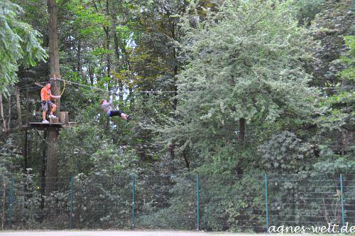tree2tree