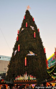 der größte Weihnachtsbaum