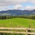 Schottland, bei Pitlochery